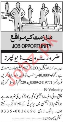 Computer & IT Staff Jobs 2019