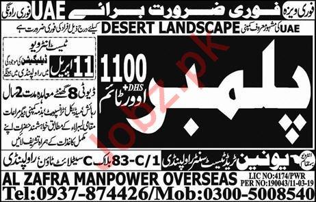 Desert Landscape Company Job 2019 For UAE