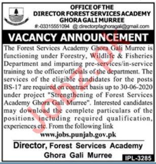 Forest Services Academy Ghora Gali Murree Jobs 2019