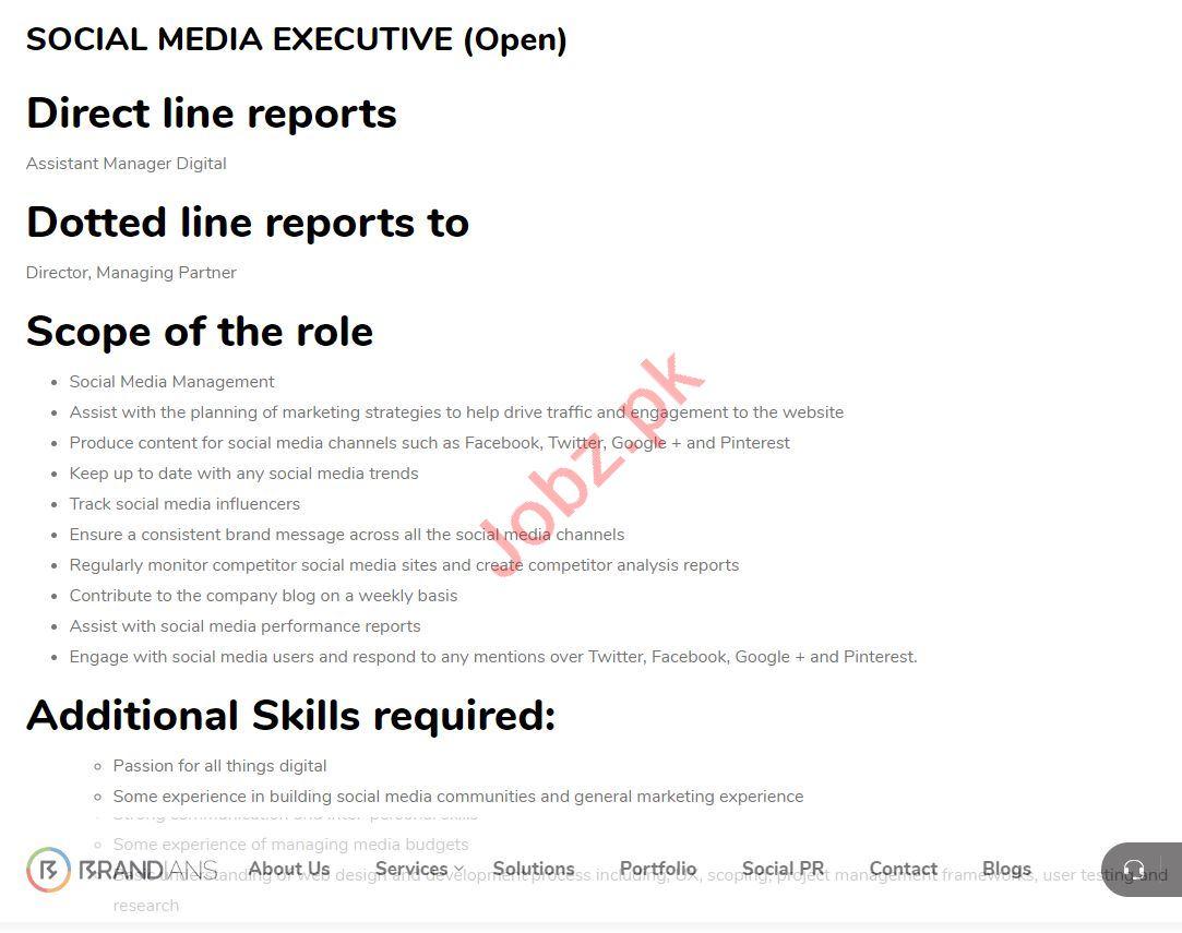 Social Media Executive Job in Karachi