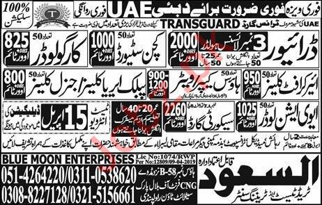 Aviation Loader Jobs in UAE