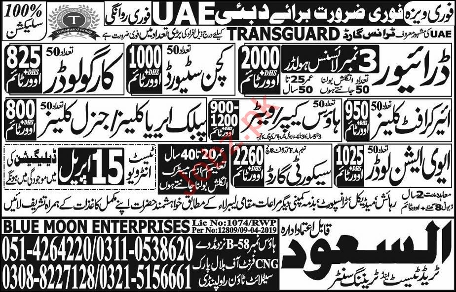 Driver & Kitchen Steward Job in UAE