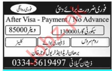 Security Guard, Waiter, Room Service Boy, Delivery Boy Jobs