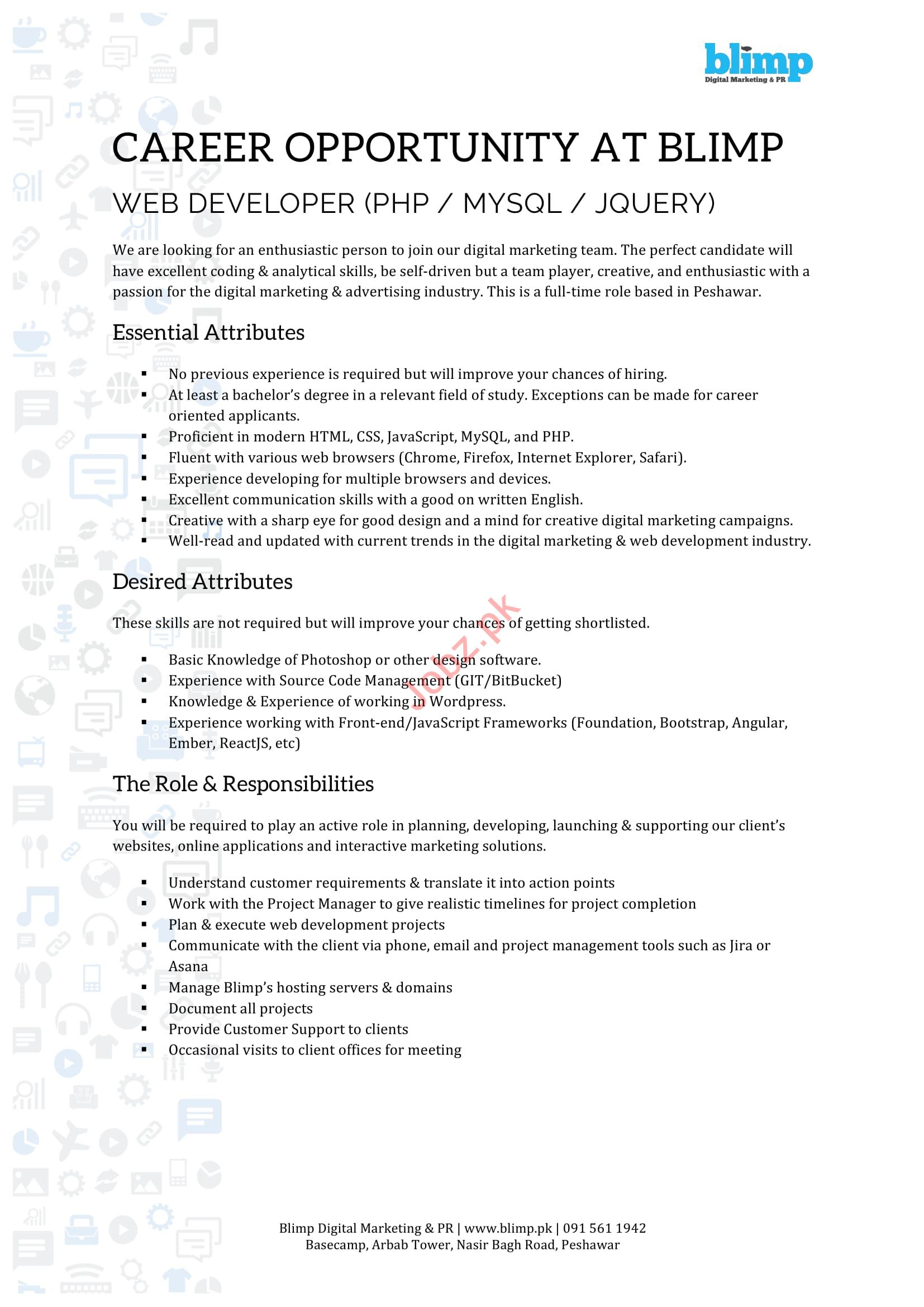 Blimp Peshawar Jobs 2019 for Web Developer