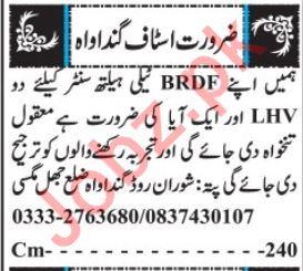 BRDF Tele Health Center Jobs 2019 in Quetta
