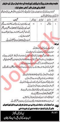 Irrigation Department Clerk Job in Dera Ghazi Khan