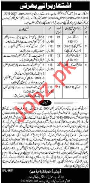 Directorate of Special Education Management Job in Lahore