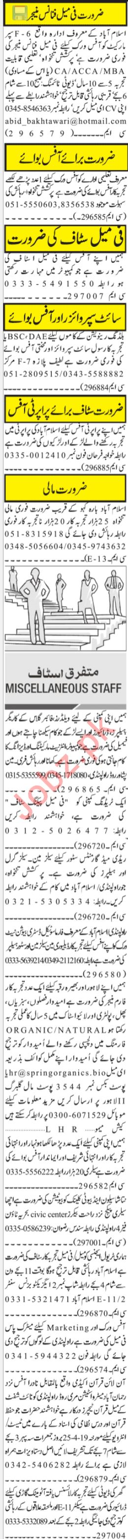 Office Staff Jobs Career Opportunity