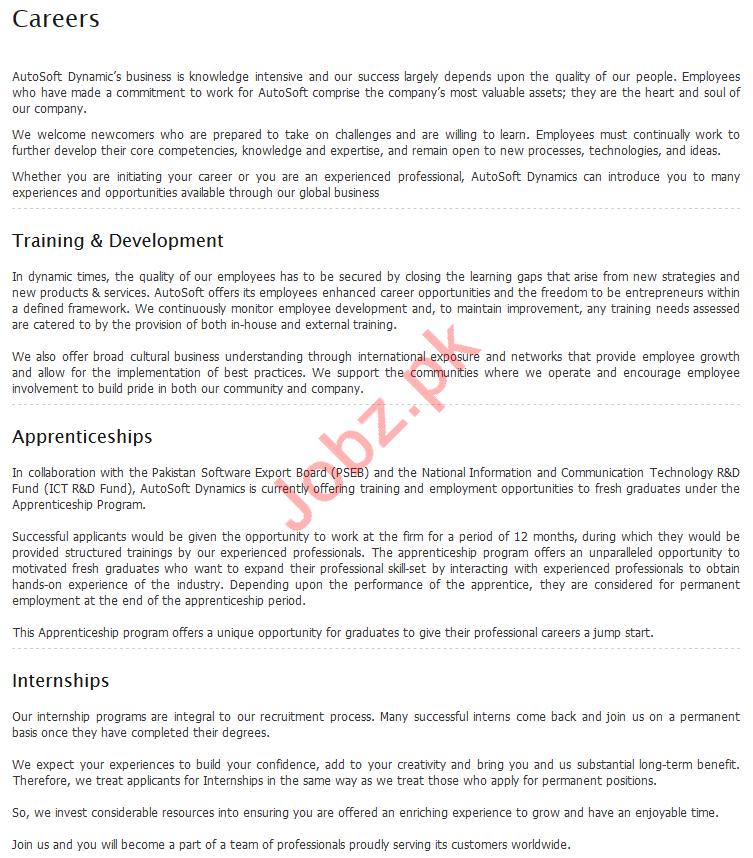 AutoSoft Dynamics Lahore Internship Programme