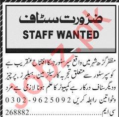 Salesman & Helper Job in Muzaffaragarh