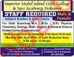 Superior Model School & College Iqra Academy Jobs 2019