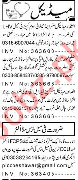 Medical Staff Job in Peshawar