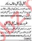 Computer Operator & Marketing Expert Job in Lahore