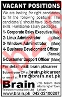 Corporate Sales Executive & Linux Administrator Jobs