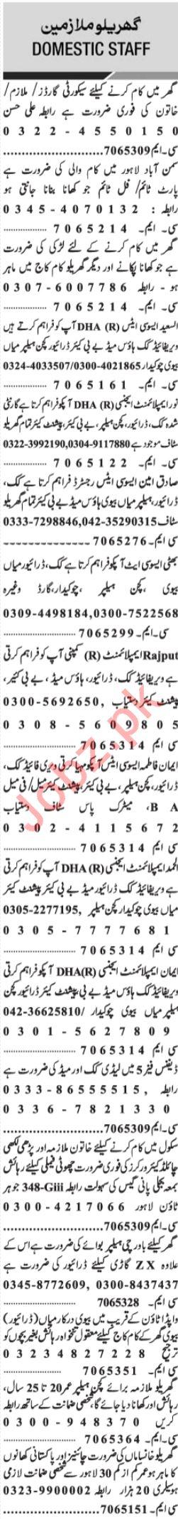Jang Sunday Classified Ads 28th April 2019 Domestic Staff