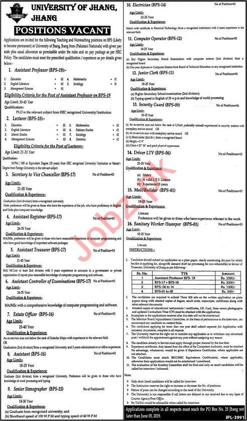 University of Jhang  Professor jobs 2019