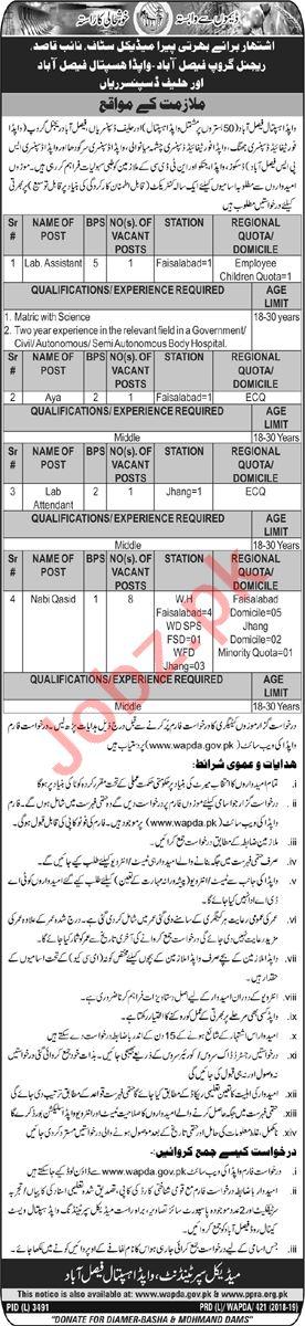Wapda Hospital Faisalabad Jobs 2019 Job Advertisement Pakistan