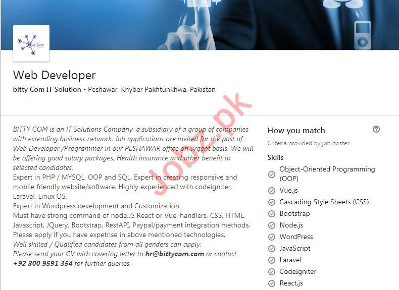 Bitty Com IT Solution Job 2019 For Web Developer