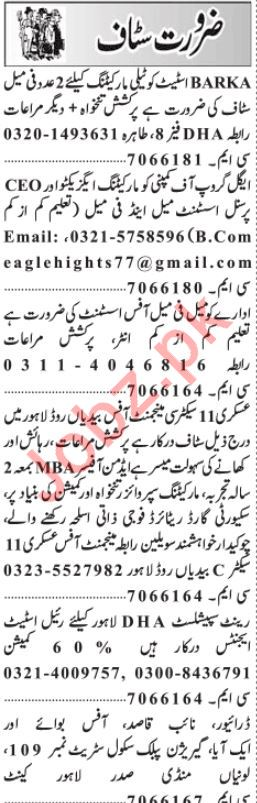 daily jang newspaper classified jobs 2019 in lahore 2019