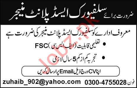 Plant Manager Job 2019 in Lahore
