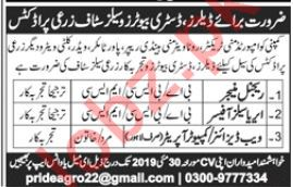 Regional Manager Jobs in Private Company