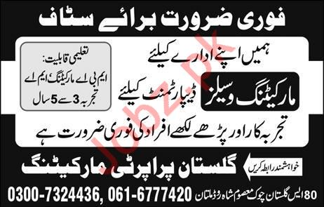 Marketing & Sales Staff jobs in Gulistan Property Marketing