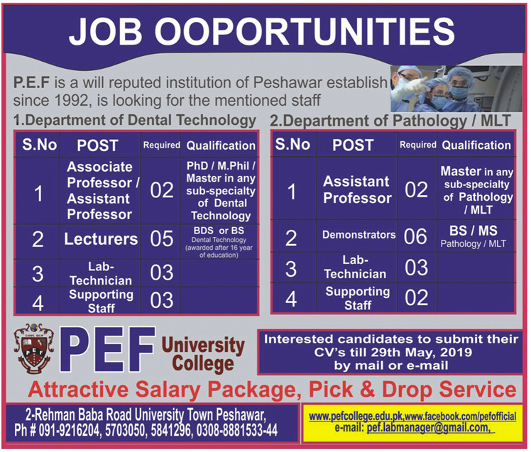 PEF College University Professor Jobs 2019
