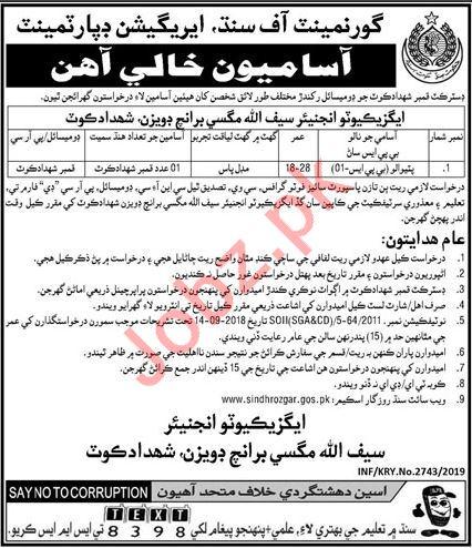 Irrigation Department Job 2019 For Peon in Shahdadkot