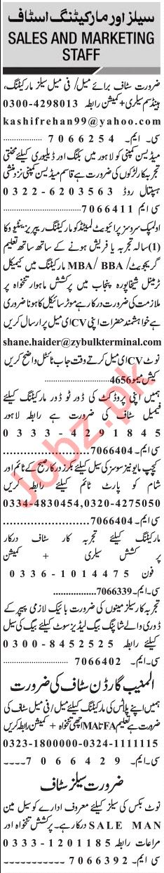 Jang Sunday Classified Ads 26th May 2019 for Marketing Staff