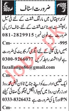 Male & Female Staff Jobs 2019