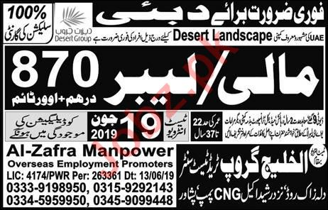 Mali Jobs Career Opportunity in Dubai