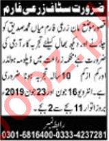 Agriculture Farm Staff Jobs Career Opportunity in Kasur