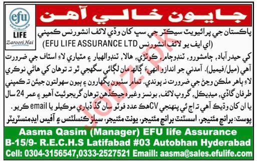 Efu Life Assurance Ltd Jobs 2019 For Hyderabad