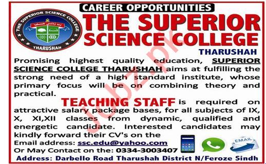 The Superior Science College Job 2019 in Tharushah Sindh