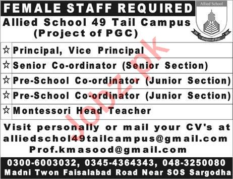 Principal Senior Coordinator Jobs in Sargodha