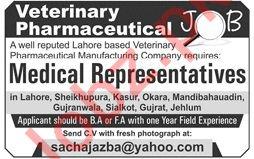 Medical Representative Job in Lahore