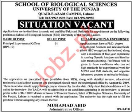 School of Biological Sciences Job 2019 in Lahore