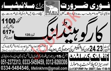 Logistic Company Jobs 2019 in Malaysia 2019 Job Advertisement Pakistan