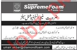 Diamond Supreme Foam Lahore Jobs for Managers