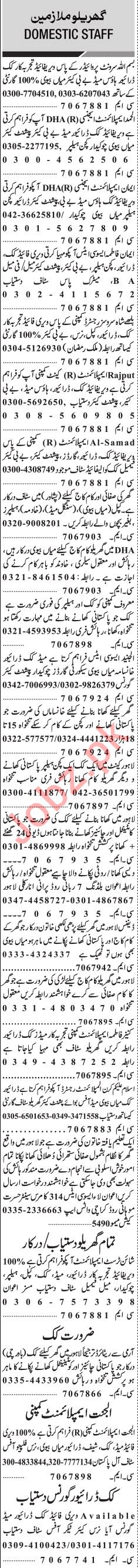 jang sunday classified ads 23rd june 2019 for domestic