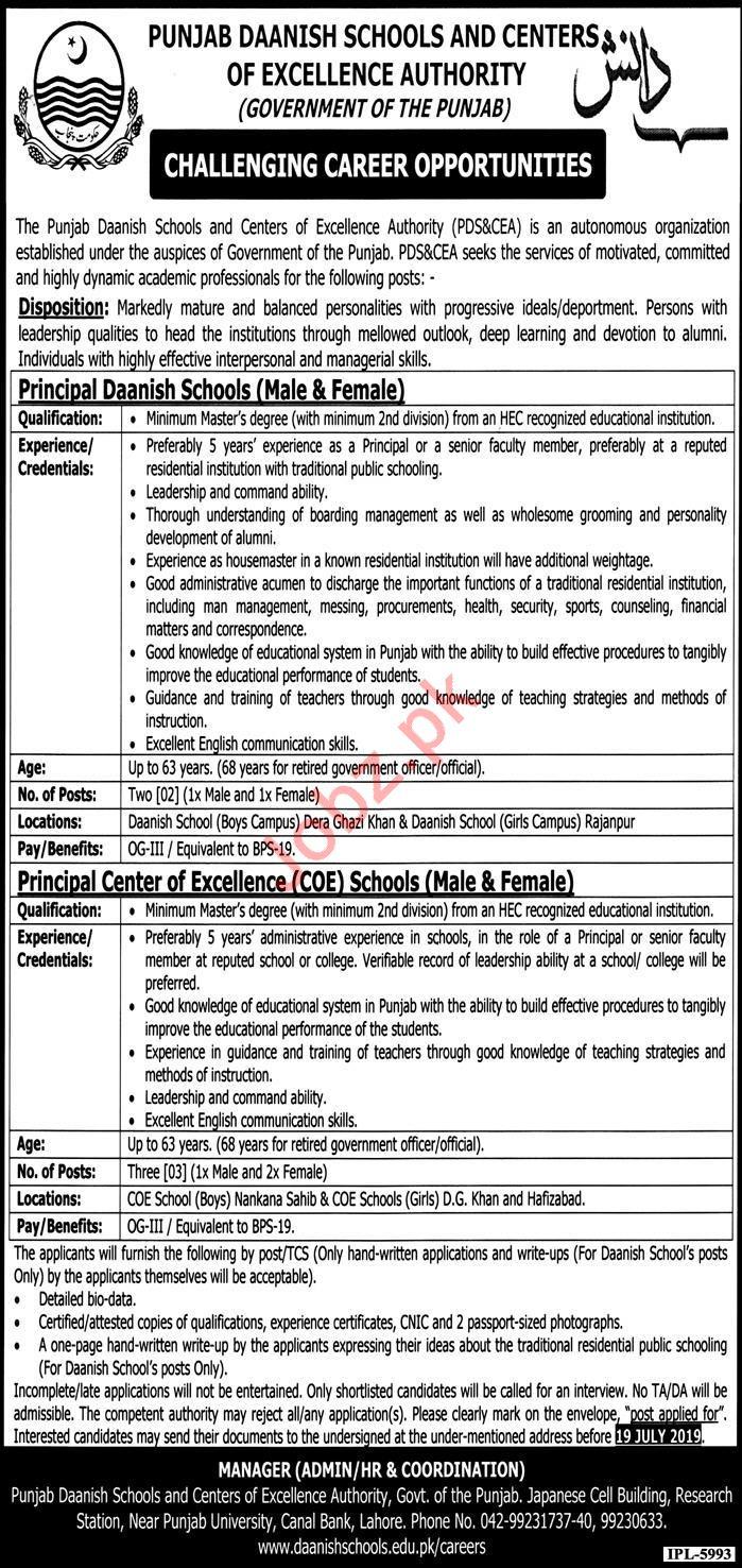 Punjab Daanish Schools Jobs For Principals