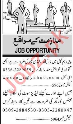 Marketing Manager & Tailor Jobs in Karachi