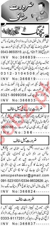 Teaching Jobs in Peshawar