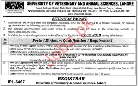 University Of Veterinary & Animal Sciences Lahore Jobs 2019