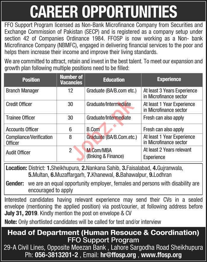 FFO Support Program Shekhupura Jobs 2019