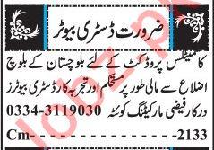 Distributor Jobs Open in Quetta