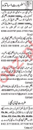 Nawaiwaqt Sunday Classified Ads 21st July 2019 Teachers