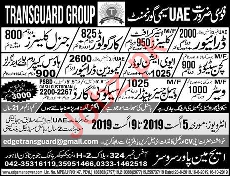 Aviation Loader & Kitchen Steward Jobs 2019