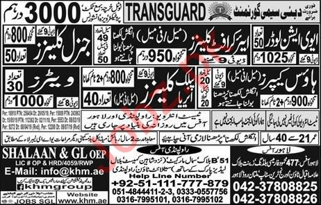 House Keeper & Waiter Jobs 2019