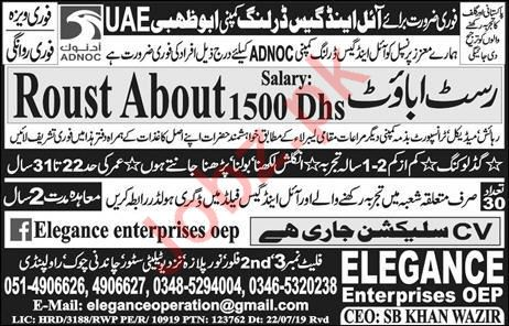 Roust About Job in Abu Dhabi